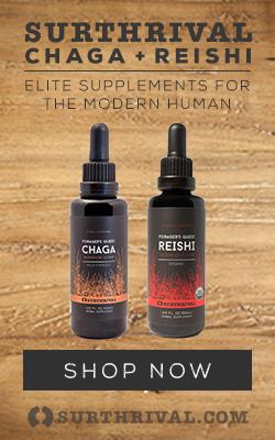 Chaga + Reishi 250 X 400 Wood