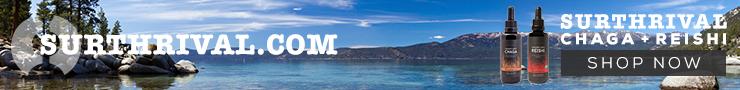 Chaga + Reishi 740 X 90 Lake Landscape