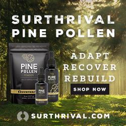 Pine Pollen 250 X 250 Forest