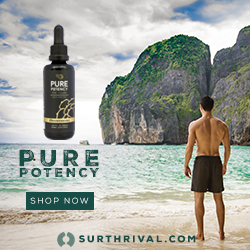 Pine Pollen Pure Potency 250 X 250 Man on Beach