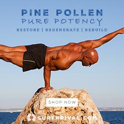 Pine Pollen Pure Potency 250 X 250 Balancing Man